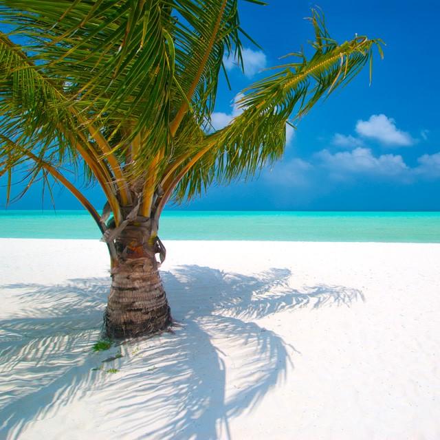 Maldive, zero fazzoletti