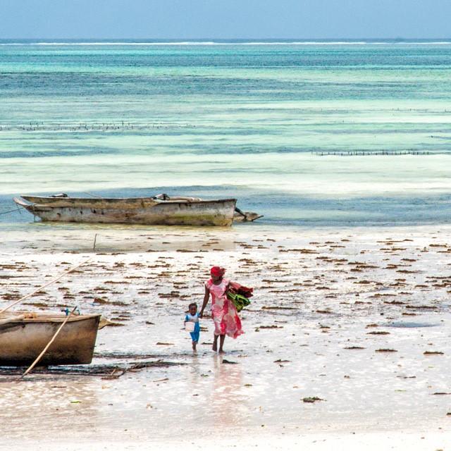 Zanzibar, tesoro, mi si è ritirato il mare