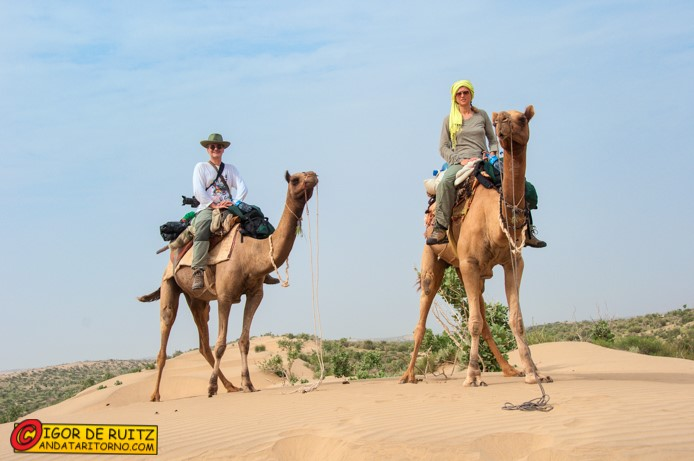 Sul cammello a Jaisalmer