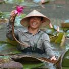 Vietnam, pianificare una favola