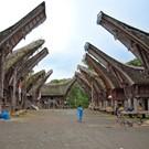 Sulawesi, vacanza con il morto
