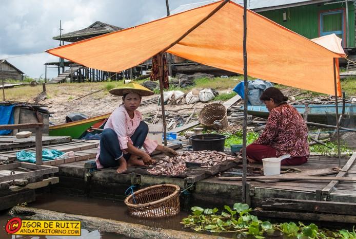 Villaggi presso il Danau Jempang