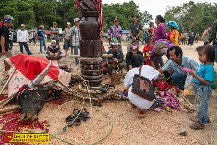 Festa nei pressi di Tanjung Issuy