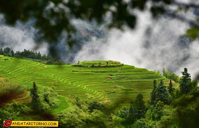 Scorcio sulle risaie di Longji nei pressi del villaggio Ping'an