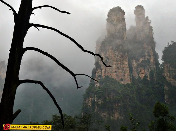 A passeggio tra i picchi nebulosi di Wulingyuan