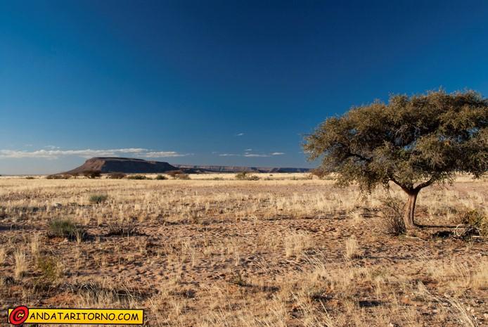 Gondwana Nature Park