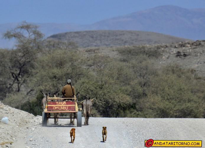 Sesfontein in Namibia